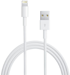 Apple Lightning to USB cable (0.5 m)