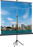 Экран на штативе Eco View  (160x160), рабочая область (160x160), Matte White