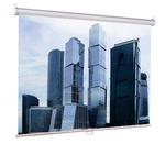Экран настенный Eco Picture  (200х200), рабочая область (200х200), Matte White